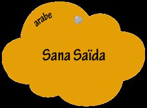 Sana Saïda en arabe
